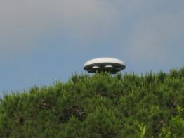 italy-ufo-24.jpg